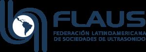 logo FLAUS posit H2