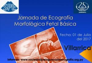 Jornada de Ecografía Morfológica Fetal Básica